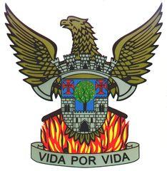 Associação Humanitária dos Bombeiros Voluntários de Oliveira de Azeméis